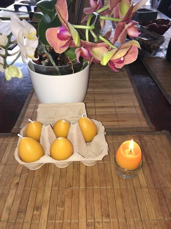 6 Eier Stumpenkerzen 100% Bienenwachs mit einem Teelichtglas im Karton